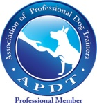 APDT_Prof_COLOR